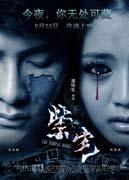 2011最新电影 紫宅