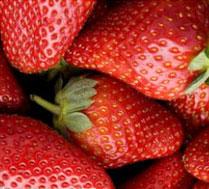 香香草莓园