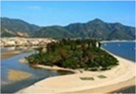 【十一旅游】惠州巽寮出海捕鱼一天游