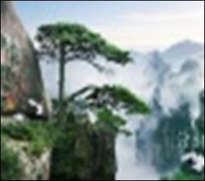 【国庆旅游】黄山徽州自由行特惠
